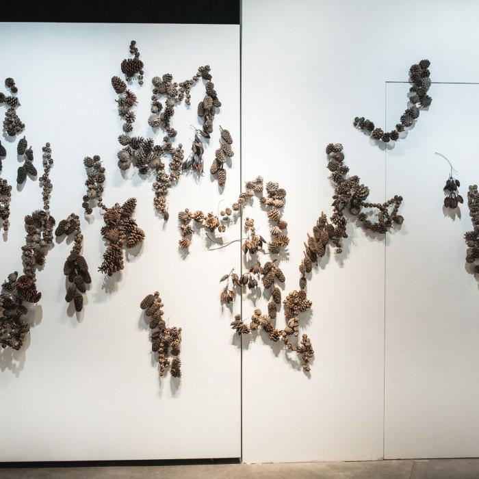 Mind(less) Wilderness - Miaja Gallery (2)