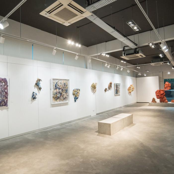 Mind(less) Wilderness - Miaja Gallery (4)