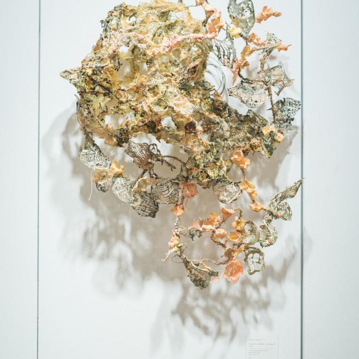 Mind(less) Wilderness - Miaja Gallery (53)
