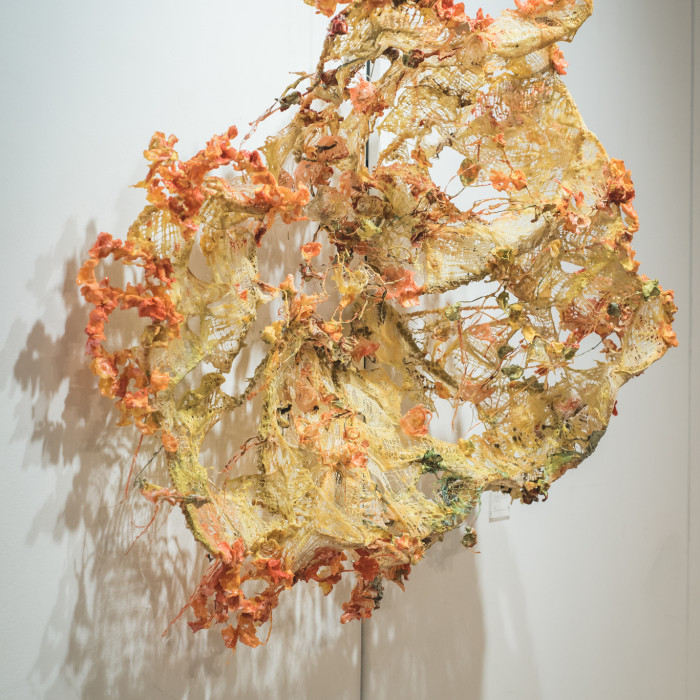Mind(less) Wilderness - Miaja Gallery (55)